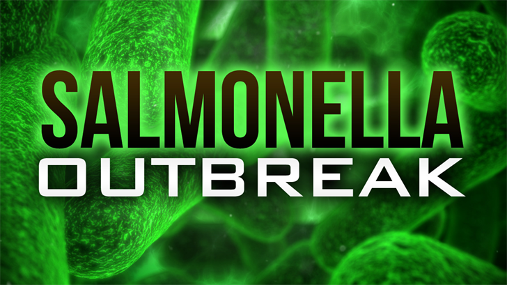 Burrito Delight salmonella outbreak peaks at 37 cases