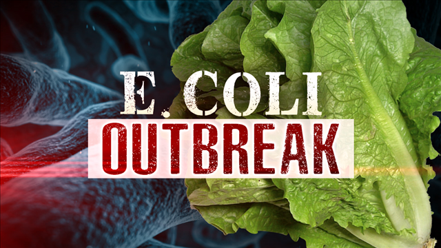 Chopped romaine lettuce from Schnucks delis and salad bars recalled