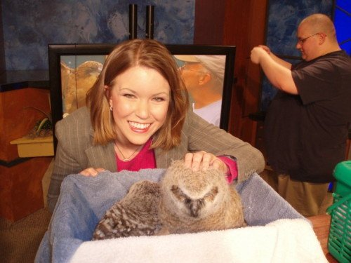 Jeannie gets to meet some baby owls on 13 News at Noon.